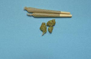 comportament consum droguri